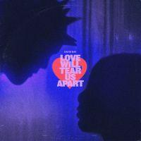 DAVID BAY - Love Will Tear Us Apart