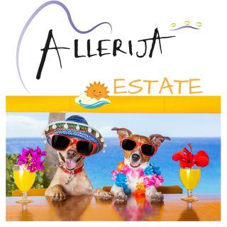 Allerija - Estate (Radio Date: 22-05-2017)