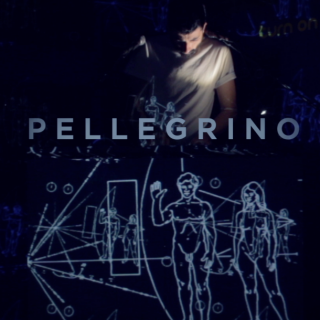 Pellegrino - Carl Sagan (Live) (Radio Date: 10-11-2016)