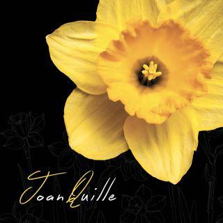 Joan Quille - Via Del Vanto (Radio Date: 25-10-2019)