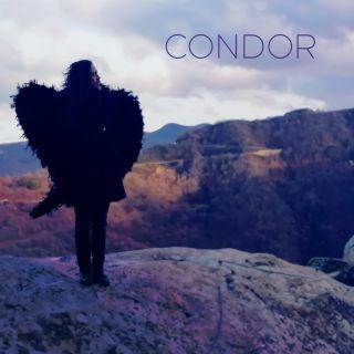Condor, di Roberto Angelini