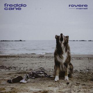 freddo cane (feat. Mameli), di Rovere