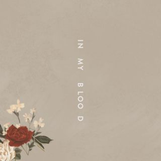 Shawn Mendes - In My Blood (Radio Date: 06-04-2018)